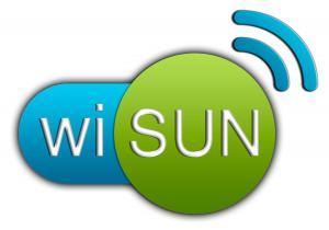 Wi-SUN聯盟的發展願景乃是基於網狀網路通訊協定IEEE 802.15.4g技術規範,通過測試和認證計畫提供強大的產品連線性,發展Wi-SUN生態系統,實現智慧城市和智慧公用通信網路的互通性。