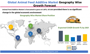 Global Animal Feed Additive Market Forecast 2021 By Geography