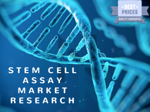 Stem Cell Assay, Stem Cell Assay market, Stem Cell Assay market research, Stem Cell Assay market report, Stem Cell Assay market analysis, Stem Cell Assay market forecast, Stem Cell Assay market strategy, Stem Cell Assay market growth, Thermo Fisher Scient