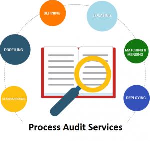 Process Audit Services