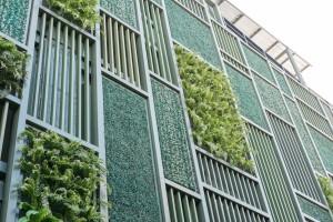 Green facade, vertical garden in architecture