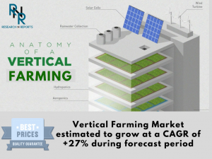 Vertical Farming Market, Vertical Farming, Vertical Farming Market analysis, Vertical Farming Market Research, Vertical Farming Market Strategy, Vertical Farming Market Forecast, Vertical Farming Market growth