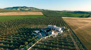 Aerial of prestigious mansion outside Seville Spain