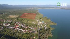 37 hectare plot