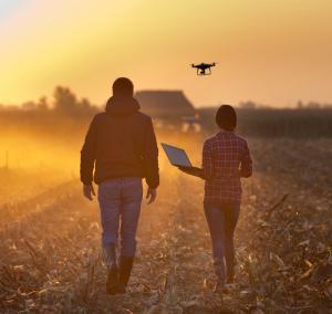 Drone Farming Consulting