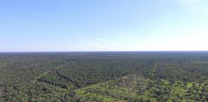 Largest REDD+ Project in the Paraguayan Chaco Now Underway