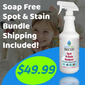 Spot & Stain Bundle: Spot & Stain Remover (Available only in the Continental United States)