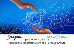 3Nayan and NetworkGain Partnership